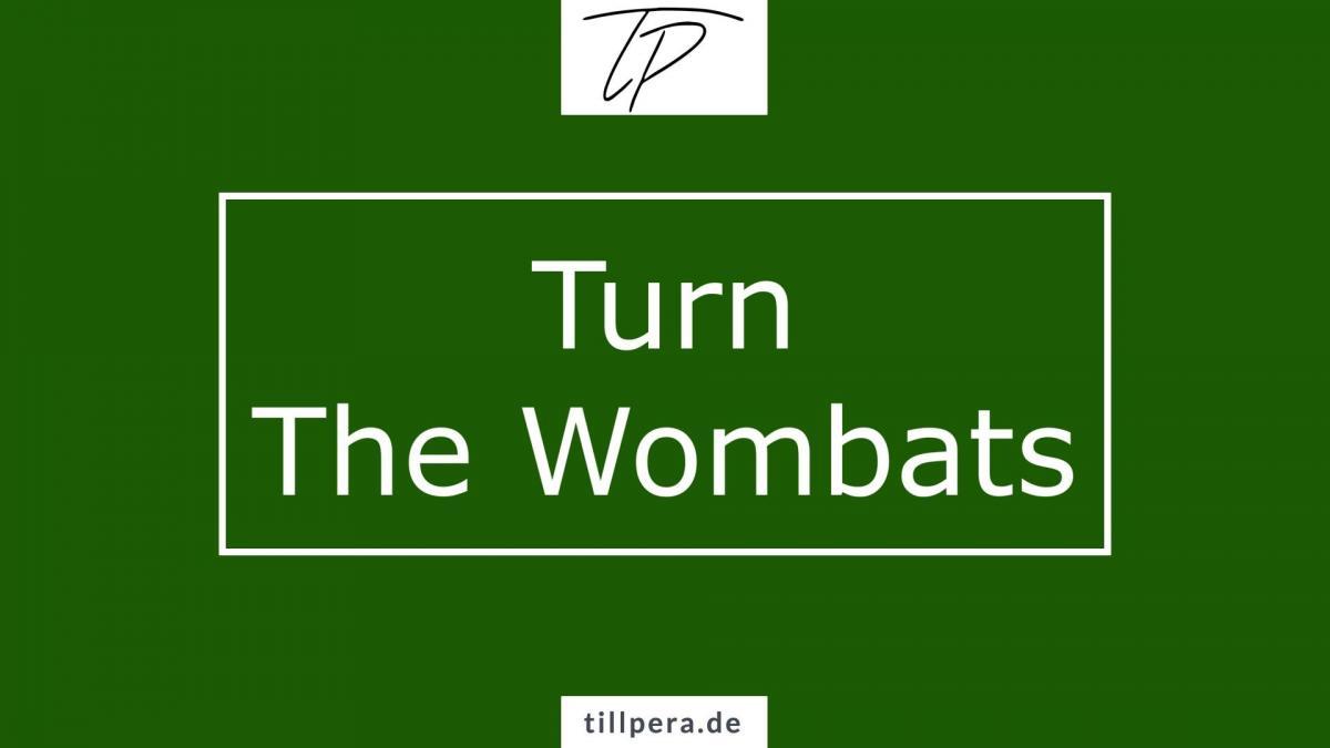 Titelbild Turn The Wombats